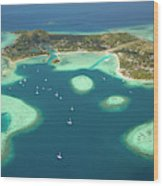Coral Reef And Musket Cove Island Wood Print