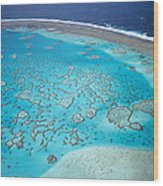 Coral Reef Capricornia Cays Np Wood Print