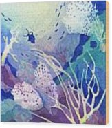 Coral Reef Dreams 4 Wood Print