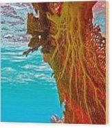 Coral Reef Fern Wood Print