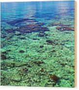 Coral Reef Near The Island At Peaceful Day. Maldives Wood Print
