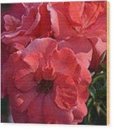 Coral Roses 2013 Wood Print