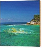 Coral Seas Haiti Wood Print