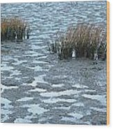 Cord Grass At Low Tide In San Francisco Bay Wood Print