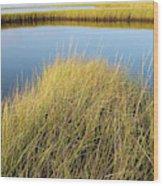 Cordgrass And Marsh, Southern Wood Print