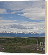 Cordillera Moore Wood Print