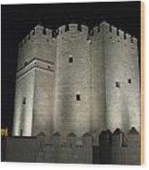 Cordoba Castle By Night Wood Print