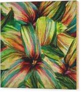 Cordyline Wood Print