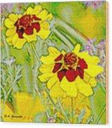 Coreopsis Flowers Wood Print