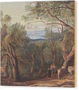 Corfu From Santa Decca Wood Print