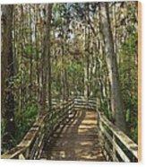 Corkscrew Wood Print