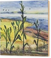 Corn Field By The Sea Wood Print