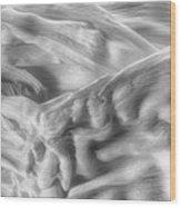 Corn Husk - A Beautiful Chaos Wood Print