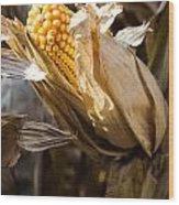Corn In Husk Wood Print