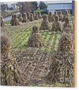 Corn Shocks Amish Field Wood Print