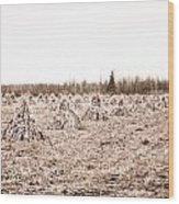Corn Shocks Wood Print