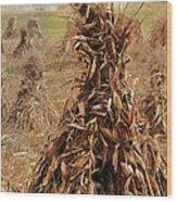 Corn Stalk Bales Wood Print by Marcia Colelli