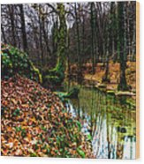 Corner Of Water Wood Print