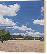 Cornfield And Finca Near Sineu Wood Print