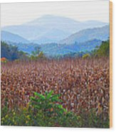 Cornfield In The Mountains Wood Print