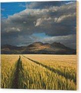 Cornfield Mountains Wood Print