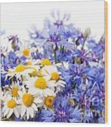 Cornflower And Chamomile Bunch Blooms  Wood Print