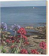 Cornwall Newlyn Coast One Wood Print