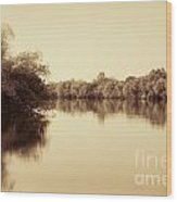 Corroboree Billabong In Sepia Wood Print