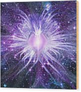 Cosmic Heart Of The Universe Wood Print