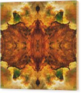 Cosmic Kaleidoscope 2  Wood Print
