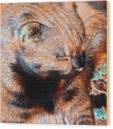 Cosmic Kitty 3 Wood Print