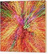 Cosmic Phenomenon Or Christmas Lights Wood Print