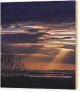 Cosmic Spotlight On Shannon Airport Wood Print