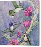 Costa Hummingbird Family Wood Print