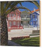 Costa Nova Portugal Wood Print