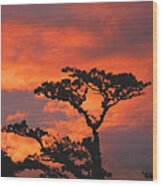 Costa Rican Sunset Wood Print
