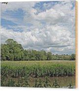 Cotswold Landscape Wood Print