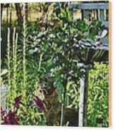 Cottage Bird Garden Wood Print