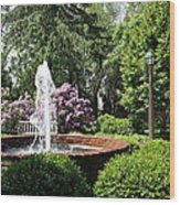 Cottage Garden Fountain Wood Print