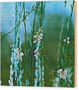 Cottage Garden Three Wood Print