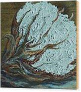 Cotton Boll On Wood Wood Print by Eloise Schneider