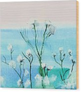 Cotton Poppies Wood Print