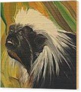 Cotton Top Tamarin Zack Half Of All Proceeds Go To Jungle Friends Primate Sanctuary Wood Print