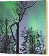 Cottonwood Aurora Wood Print