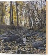 Cottonwood Creek Near Deer Lodge Montana Wood Print