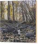 Cottonwood Creek Near Deer Lodge Montana Wood Print by Dana Moyer