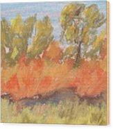 Cottonwood Grove Wood Print