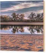 Cottonwoods At Barr Lake Wood Print