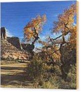 Cottonwoods In Buckhorn Wash 4059 Wood Print