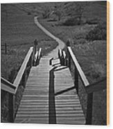 Coulee Stairs Wood Print